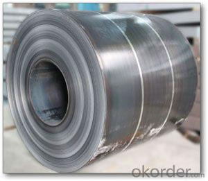 THE HOT-ROLLED STEEL COIL
