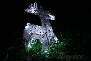 Christmas 3D Motif Light Acrylic Reindeer