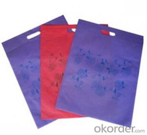 Nonwoven Bag for Gift Tote