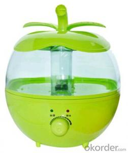 Green Apple Fruit Home Humidifier
