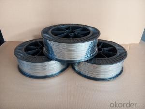 Flat  wire