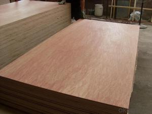 Bintangor Face Commercial  Plywood Thin Board