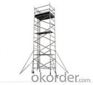 Double width uprightness climb ladder scaffolding