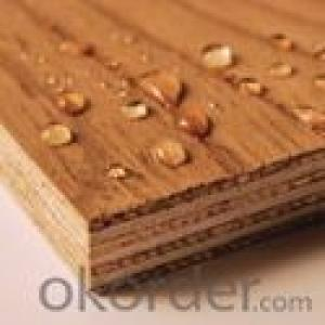 Full Okoume Wood Veneer Face and Core  Plywood Board