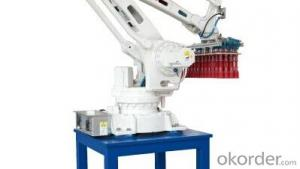 Auto Robot Palletizing Machine