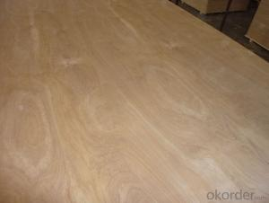 Birch Face Commercial Plywood Thick Board