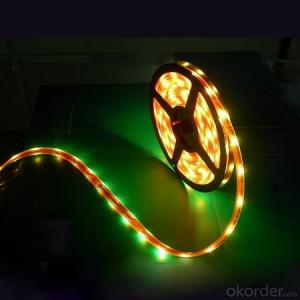 DC12V Led Strip Light