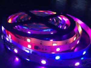 Low Voltage Led Strip Light RGB