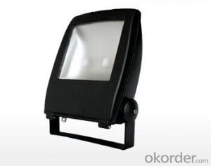 LED Floodlights EL-FL01100
