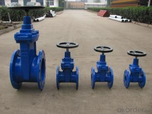 Non-rising Stem Resilient Seated Gate Valve DN40