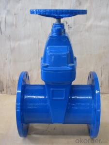Rising Stem Solid Wedge Gate Valve ISO5208