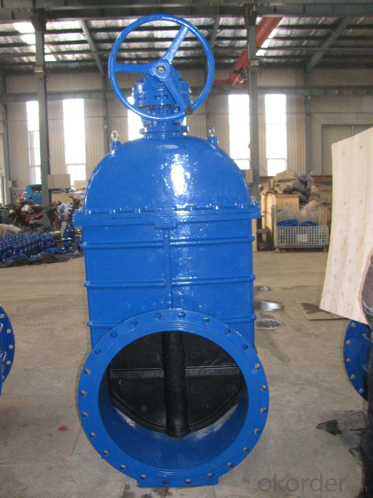 Non-rising Stem Resilient Seated Gate Valve D800