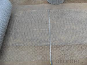 Galvanized Hexagonal Wire Mesh Panel