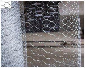 Hot Dipped Galvanized Hexagonal Wire Mesh