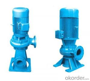 WL Vertial Sewage Pumps