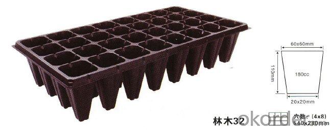 Plastic Tree Seed Tray 32 Nursery