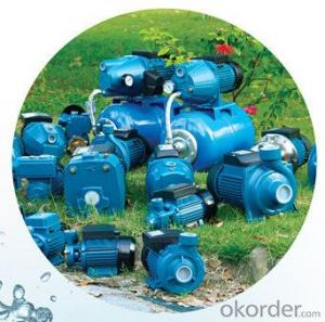 Centrifugal Surface Pump for Garden Irrigation