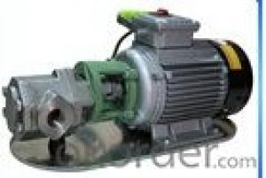 Stainless Steel Oil Transfer Gear Pump