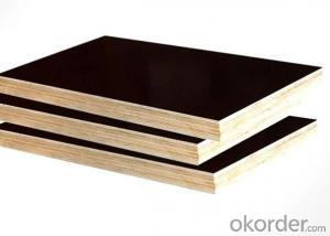 Best price Marine Plywood / Film Faced Plywood with Good Quality