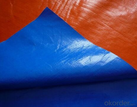 Blue/Orange PE Tarpaulin
