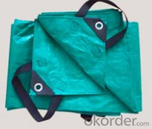 PE tarpaulin bag