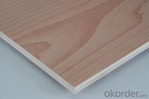 Red Beech Plywood Poplar Core 4'x8'