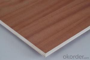 Good Quality Sapele Plywood Poplar Core 4'x8'