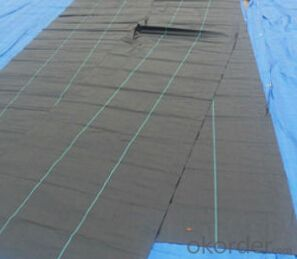pp woven fabric for Agricutture