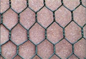 Popular PVC coated Hexagonal Wire Mesh