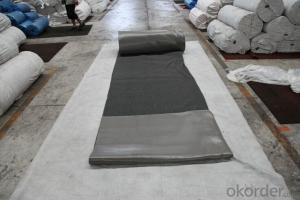 Coil Carpet High Quality PVC Coil Mat Roll