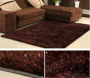 Brown Plain Color Hand Tufted  Polyester Shaggy Carpet