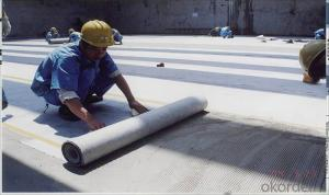 High Polymer Polyethylene Waterproof Membrane