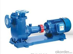 ZB Series Self-Priming Centrifugal Water Pumps