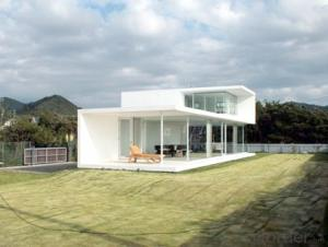 Container House/Home with Prefab House Made in China