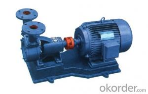 W Vortex Water Pump