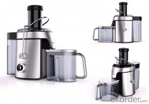 Stainless steel 800w juicer