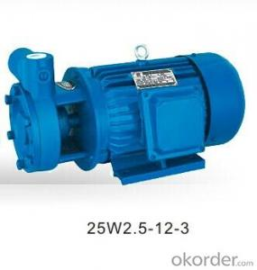 W Vortex Pumps