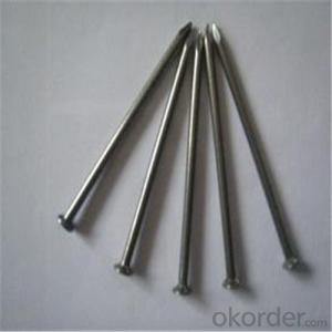 Polishing Common Wire Nail