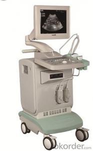 Full-digital Ultrasound Diagnostic System