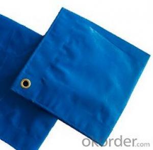 Blue 220gsm PE Tarpaulin Tarp Tent Waterproof