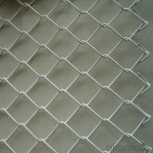 Chain Link Wire Mesh Wire Mesh  Factory with Low Price and High Quality