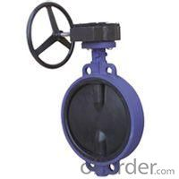 butterfly valve resilient gate Wafer-style
