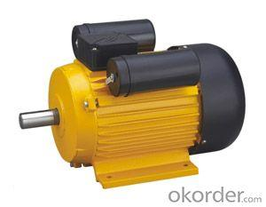 Electric Motor YL