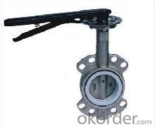butterfly valve DN40mm-DN300