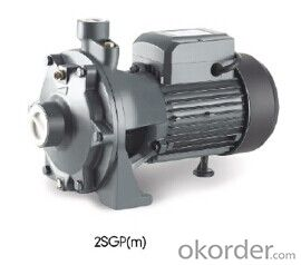 Series 2SGPm Centrifugal Pump