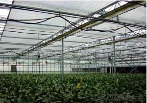HDPE aluminium shade net for greenhouse 5years guarantee