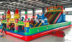 Factory New Designed Colorful Hot Inflatable Castle Combo