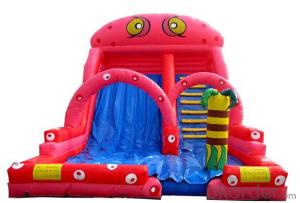 Commercial Grade Exciting Playing Inflatable Combo Castle