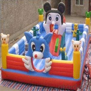 Attractive Kids Favorite Cartoon Inflatable Jumping Castle