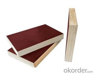 Plywood with Cotton Wood with Long Using Lifetime for Formwork